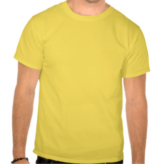 Orden del día gay camisetas
