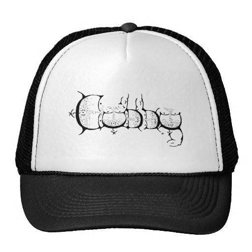 ¡Orgullo del Cubby! Gorro