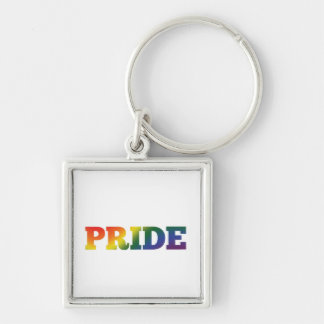 Orgullo gay del arco iris en blanco llavero