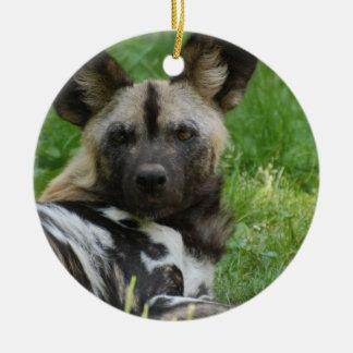 Ornamento africano del perro salvaje ornato