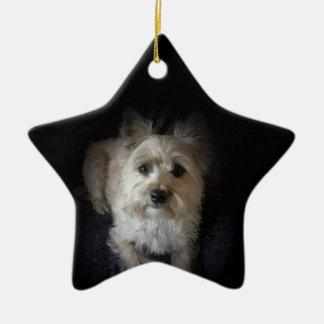 "Ornamento canino de la estrella amante del perro"""