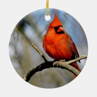 Ornamento cardinal soleado del premio del escudo