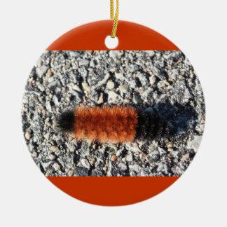 ¡Ornamento con el gusano lanoso! Ornamente De Reyes
