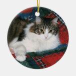 Ornamento conmemorativo del navidad del mascota ornamento para arbol de navidad