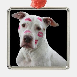 Ornamento de Kissable Pitbull