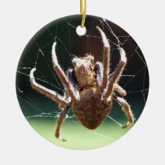 Ornamento de la araña del tejedor del orbe del adorno redondo de cerámica