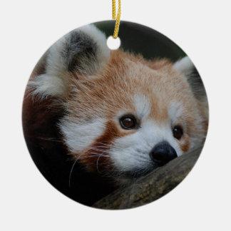 Ornamento de la panda roja