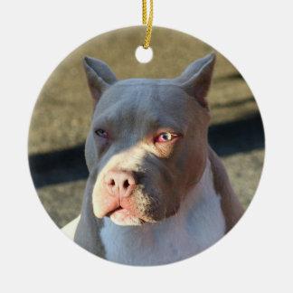 Ornamento de Staffordshire Terrier americano Adorno Navideño Redondo De Cerámica