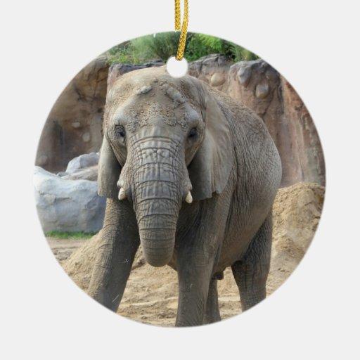 Ornamento del árbol de navidad del elefante africa ornamento para reyes magos