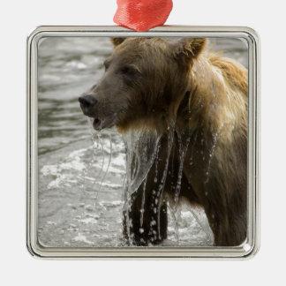 Ornamento del baño del oso adorno cuadrado plateado