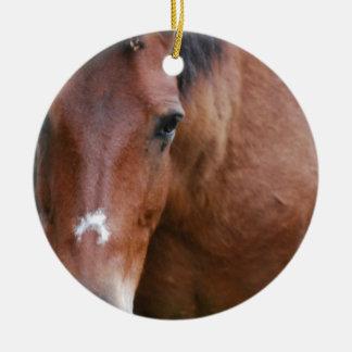 Ornamento del caballo de Paso Fino Ornatos