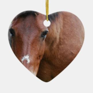 Ornamento del caballo de Paso Fino Adorno