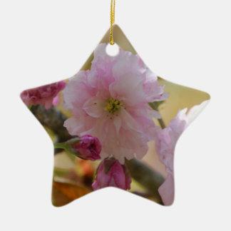 Ornamento del cerezo adorno
