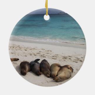 Ornamento del león marino adorno navideño redondo de cerámica