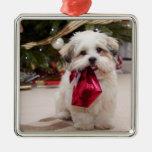 Ornamento del navidad de la foto del mascota ornato
