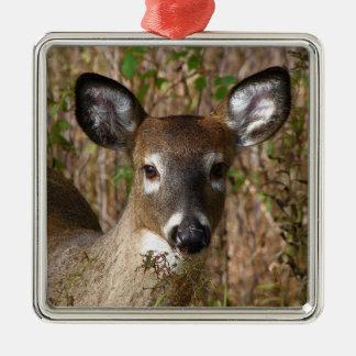 Ornamento del navidad de los ciervos ornamentos de reyes magos