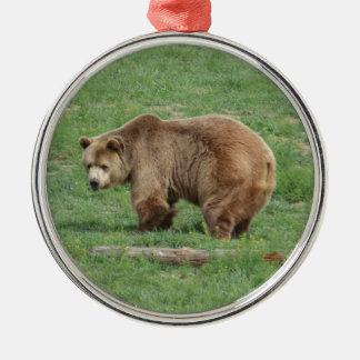 Ornamento del navidad del oso grizzly