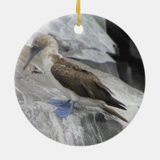 Ornamento del pájaro adorno navideño redondo de cerámica