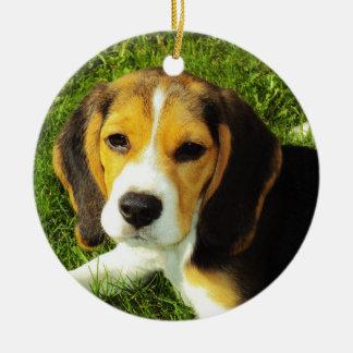 Ornamento del perrito del beagle adorno