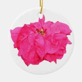 Ornamento del Poinsettia