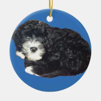 Ornamento portugués del perro de agua