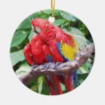 Ornamento Preening del arte del Macaw del escarlat Adorno