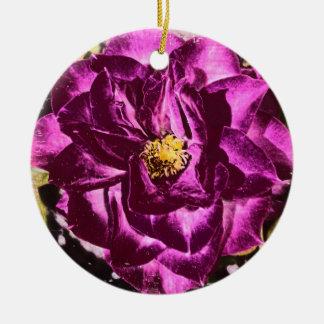 Ornamento púrpura del girasol del oso color de