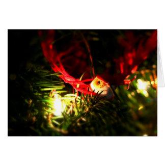 Ornamento rojo del navidad del pájaro y tarjeta de