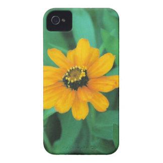 oro de la corona iPhone 4 Case-Mate carcasas