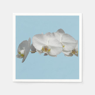 Orquídea blanca bonita en azul claro servilletas desechables