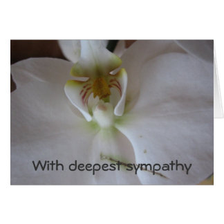 Orquídea blanca tarjeta de felicitación