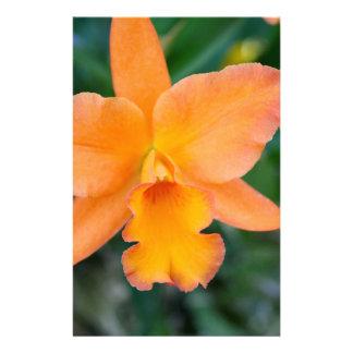 Orquídea de color salmón papelería