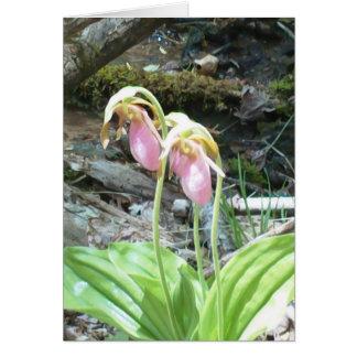 Orquídea de deslizador de señora rosada tarjeta de felicitación