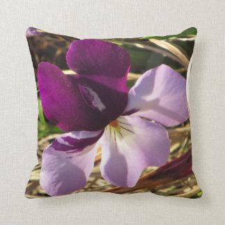 Orquídea de la montaña almohada