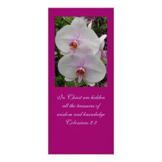 Orquídea - flor rosado (Colossians 2: 3) Tarjetas Publicitarias A Todo Color