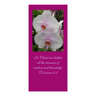 Orquídea - flor rosado (Colossians 2: 3) Tarjeta Publicitaria A Todo Color