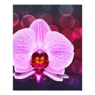 Orquídea Flyer A Todo Color