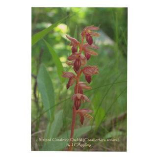 """Orquídea rayada de Coralroot 24"""""""" arte de madera"""