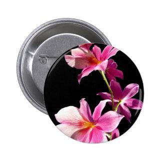 Orquídea rosada pins