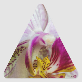 Orquídea rosada pegatina triangular