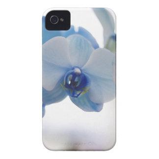 Orquídeas azules iPhone 4 Case-Mate fundas