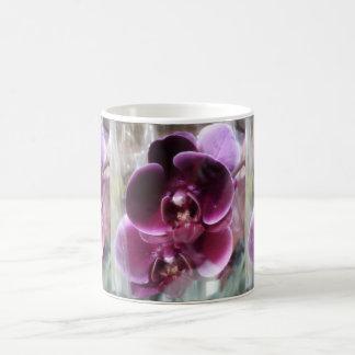 Orquídeas de polilla púrpuras oscuras taza de café