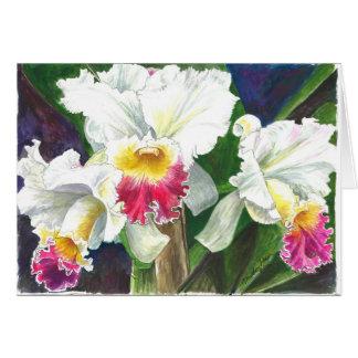 Orquídeas hermosas del jardín de Longwood en Penns Tarjeta De Felicitación