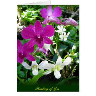 Orquídeas magentas felicitación