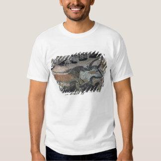 Oscile la pintura de un toro y de los caballos, camiseta