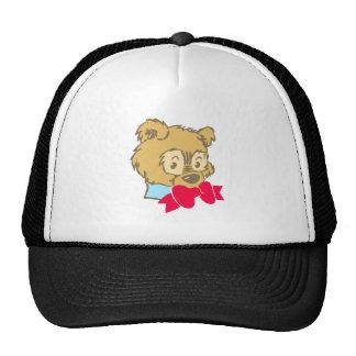 Osito de peluche teddy bear gorros