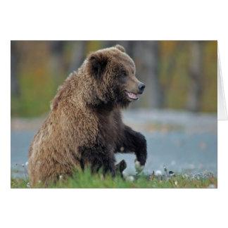 Oso de Brown de Alaska en Kenai NWR Tarjeta De Felicitación