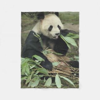 Oso de panda lindo que come la manta del paño