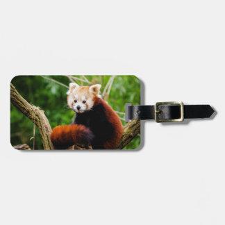 Oso de panda roja lindo etiquetas para maletas