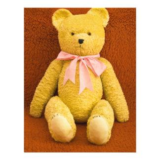 oso de peluche folleto 21,6 x 28 cm